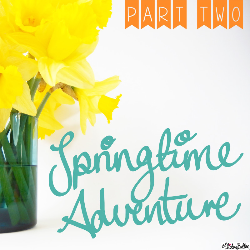 Springtime Adventure Part Two and Daffodils - Around Here...May 2015 at www.elistonbutton.com - Eliston Button - That Crafty Kid – Art, Design, Craft & Adventure.