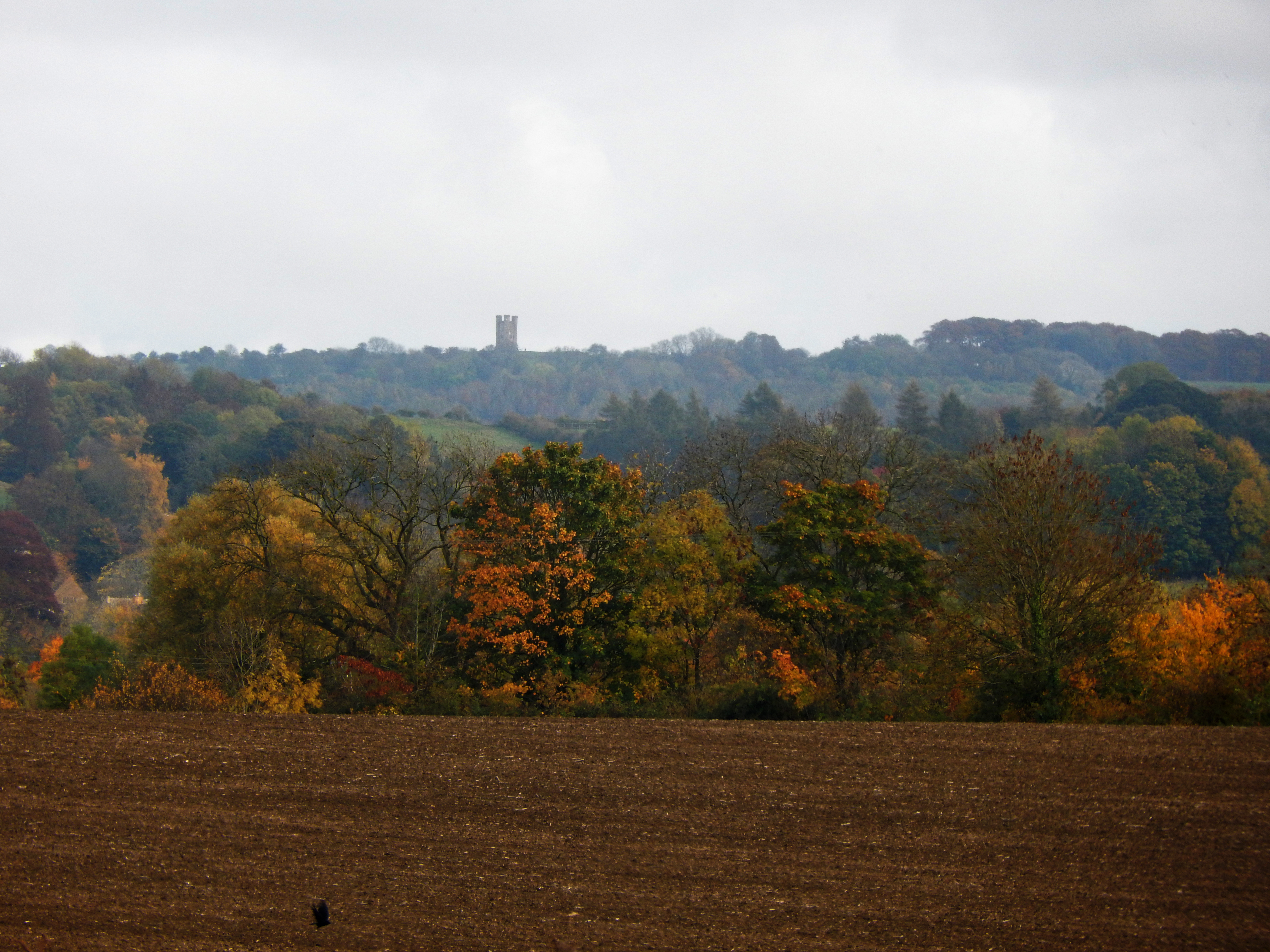 Gloucestershire Warwickshire Steam Railway - View of Broadway Tower - This Steam Train Stops at Hogwarts...Right!?