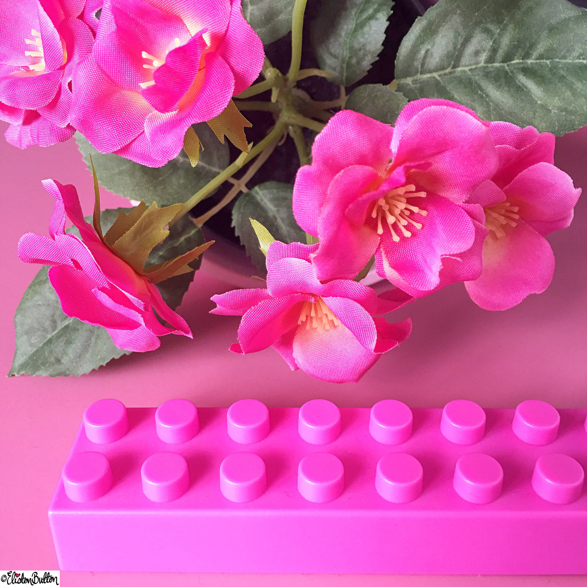 Day 29 - Man Made - Pink Lego and Flowers - Photo-a-Day – April 2016 at www.elistonbutton.com - Eliston Button - That Crafty Kid – Art, Design, Craft & Adventure.