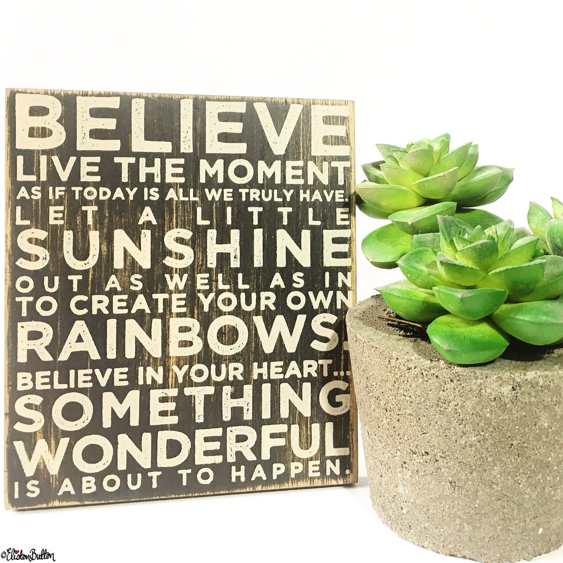 Day 18 - Message - Inspirational Quote and Succulents! - Photo-a-Day – May 2016 at www.elistonbutton.com - Eliston Button - That Crafty Kid – Art, Design, Craft & Adventure.