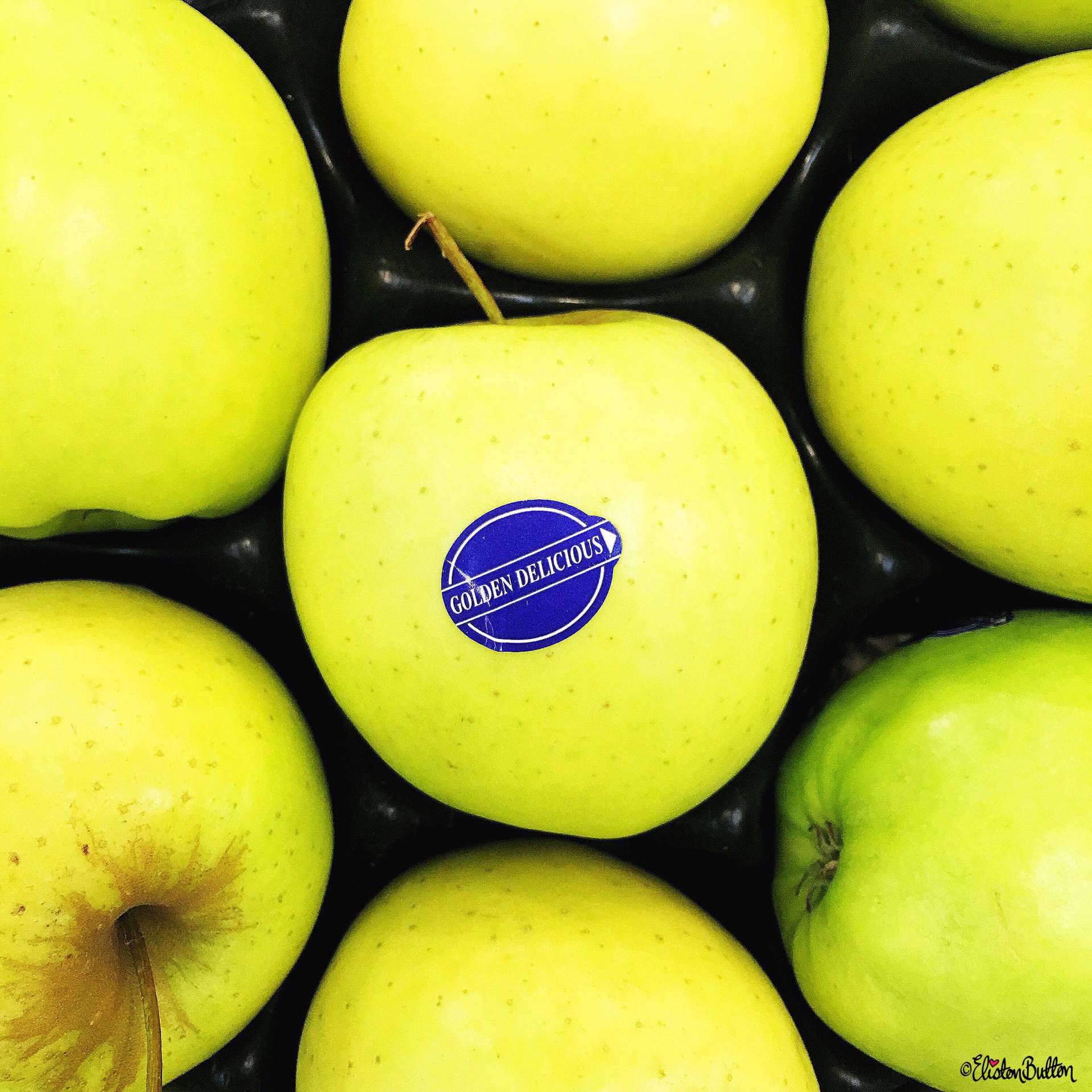 Day 22 - Delicious - Green Golden Delicious Apples - Photo-a-Day – June 2016 at www.elistonbutton.com - Eliston Button - That Crafty Kid – Art, Design, Craft & Adventure.
