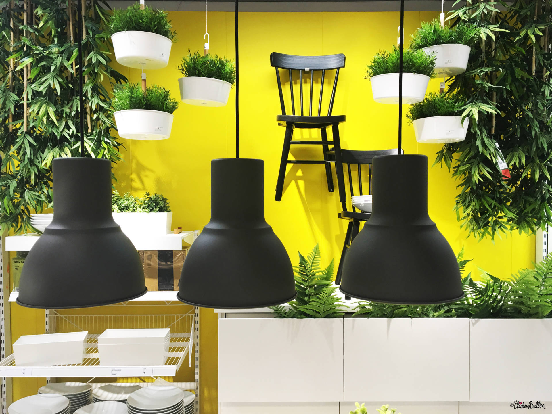 Bright Yellow Kitchen Acceessories Display With Leafy Plants At Accessories