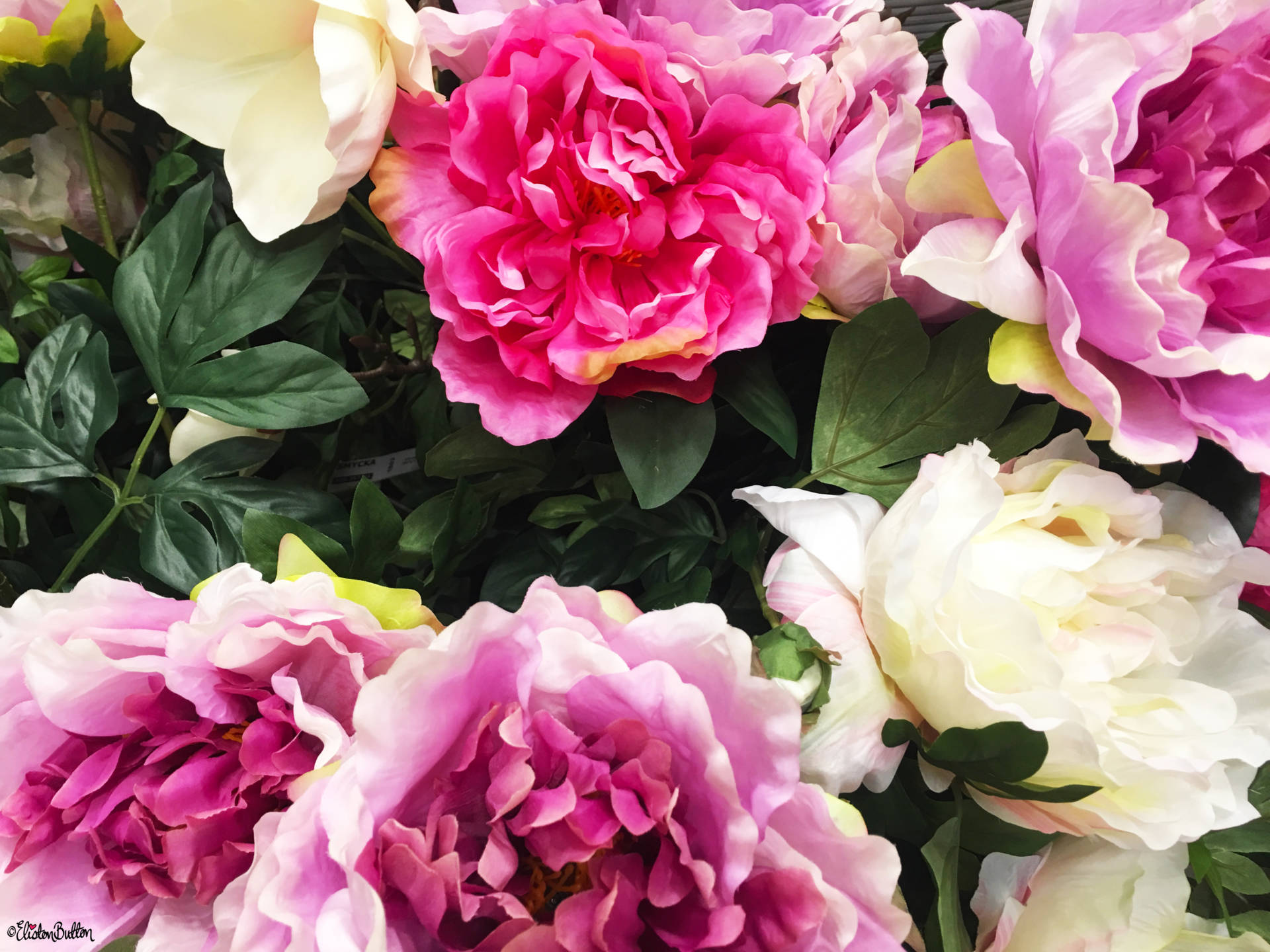 Pretty Peony Faux Flower Display at IKEA, Coventry - The Patterns and Colours of IKEA at www.elistonbutton.com - Eliston Button - That Crafty Kid – Art, Design, Craft & Adventure.