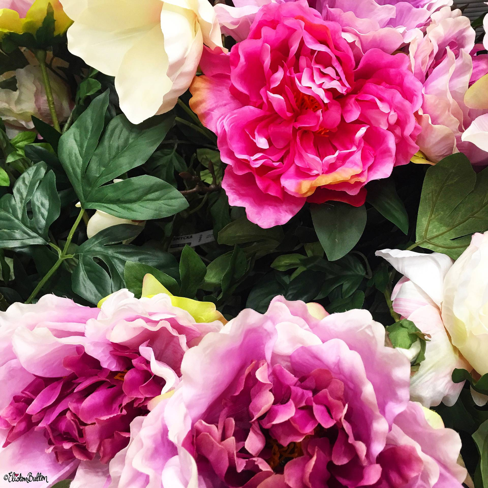 Faux Pink Peony Flowers from IKEA - Around Here…August 2016 at www.elistonbutton.com - Eliston Button - That Crafty Kid – Art, Design, Craft & Adventure.