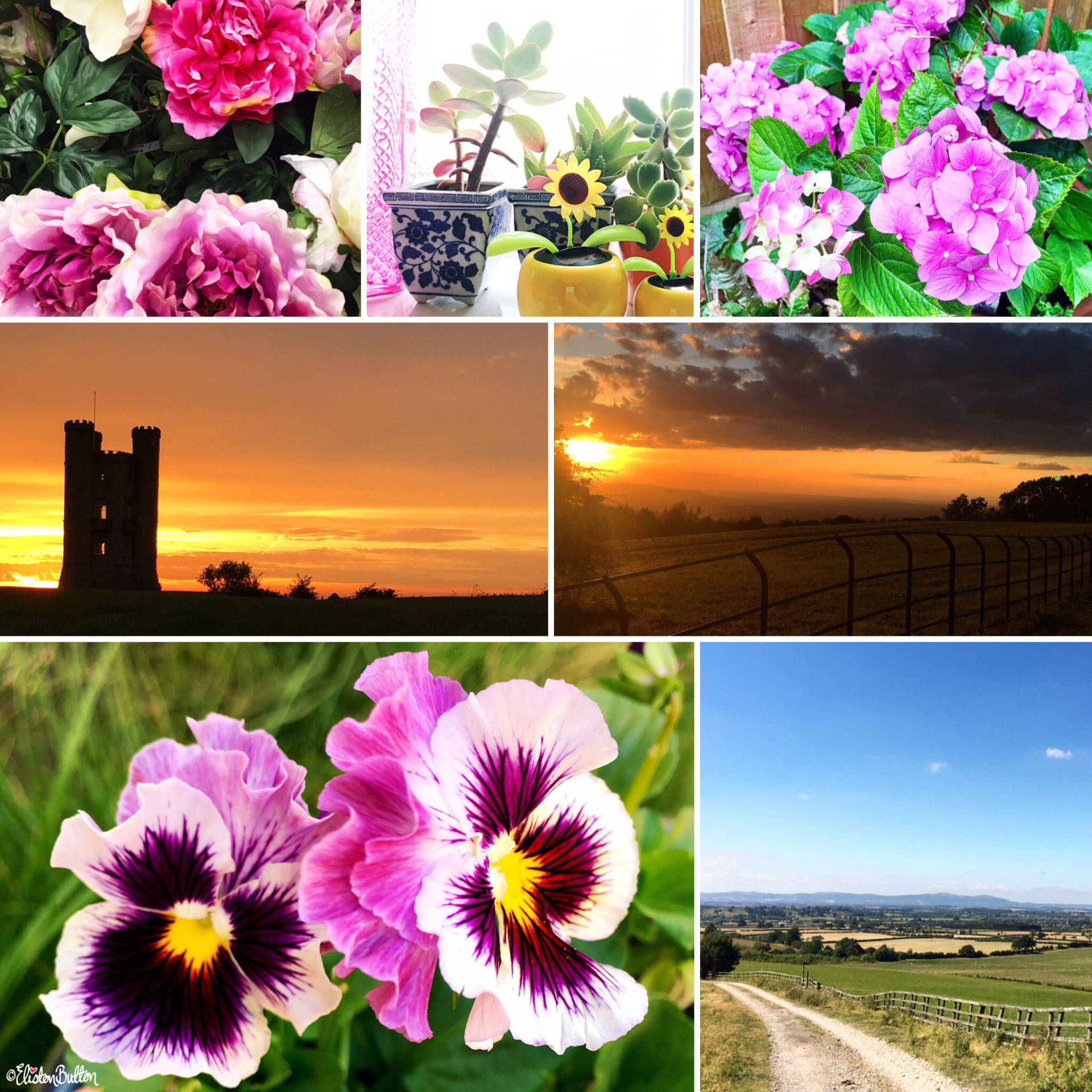 August 2016 Round Up - Sunsets and Flowers by Eliston Button - Around Here…September 2016 at www.elistonbutton.com - Eliston Button - That Crafty Kid – Art, Design, Craft & Adventure.